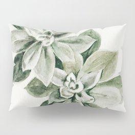 Sedum Succulents Pillow Sham