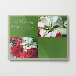 Mixed color Poinsettias 1 Merry Christmas Q5F1 Metal Print