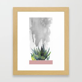 Succulent by the window Framed Art Print