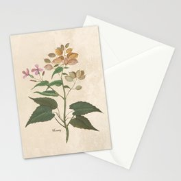 Honesty - botanical Stationery Cards