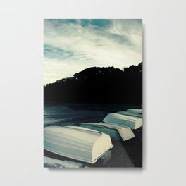 Row Metal Print