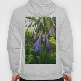 Purple Agapanthus Hoody