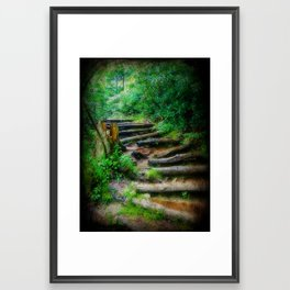 Follow Me to an Adventure Framed Art Print