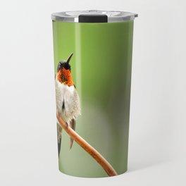 Hummingbird XVII Travel Mug