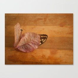 found treasury Canvas Print