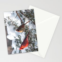 Sunny Winter Cardinals in the Adirondacks Stationery Cards