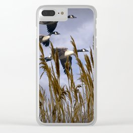 Geese flying in for a landing Clear iPhone Case