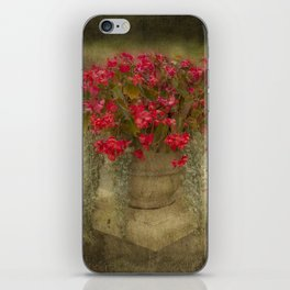 Begonia flowers iPhone Skin