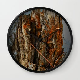 Orange Lichens on a Tree Stump Wall Clock