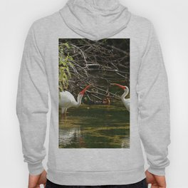 Ibis Dating Place Hoody