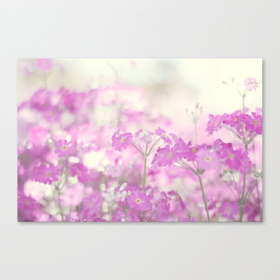 Feeling pink Canvas Print