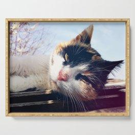 cat lying Serving Tray