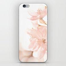 Softness embraced iPhone & iPod Skin
