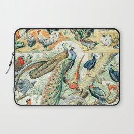 Exotic Birds // Oiseaux IV by Adolphe Millot XL 19th Century Science Textbook Diagram Artwork Laptop Sleeve
