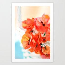 Sunny Bougainville Art Print