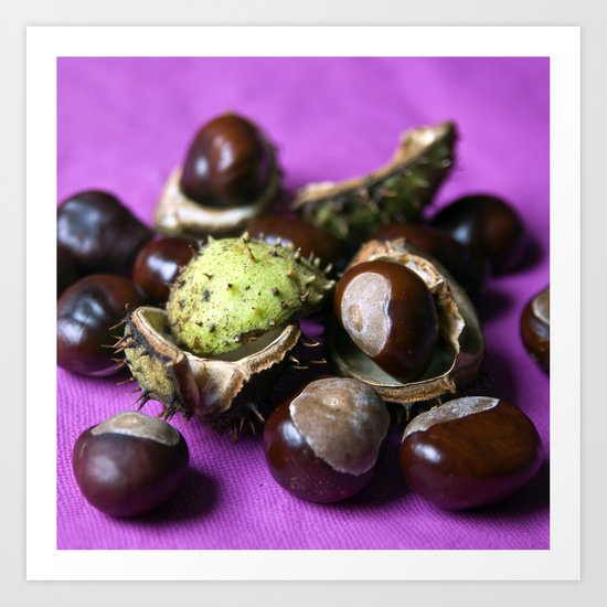 Chestnut - Stillife of Autumn  Art Print