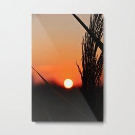 Through to the Setting Sun Metal Print