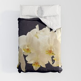Beautiful White Orchid Flower on the Dark Blue Background Comforters