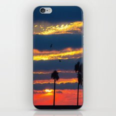 Palm Tree Sunset iPhone & iPod Skin