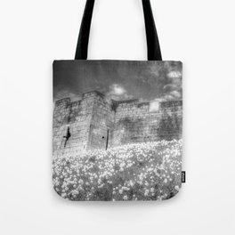 York City Walls Tote Bag