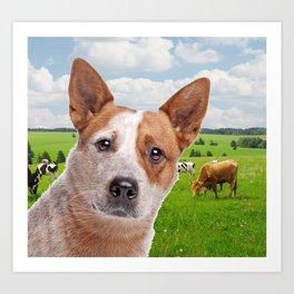Australian Cattle Dog Red Art Print