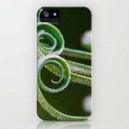 Palm frond spirals closeup iPhone Case