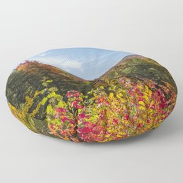 Fall foliage in NH Floor Pillow