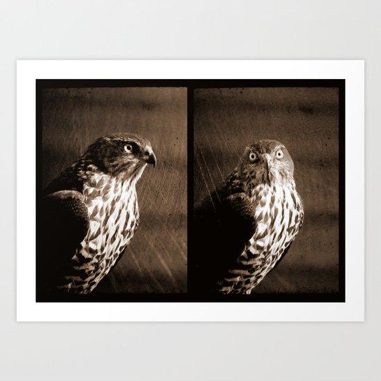 Portrait of a Predator - Diptych Art Print