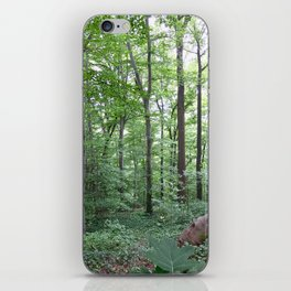 Forest dreaming iPhone Skin