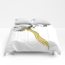 spinal column Comforters