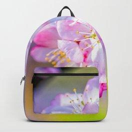 Globular Cluster Of Awesome Sakura Flowers Backpack