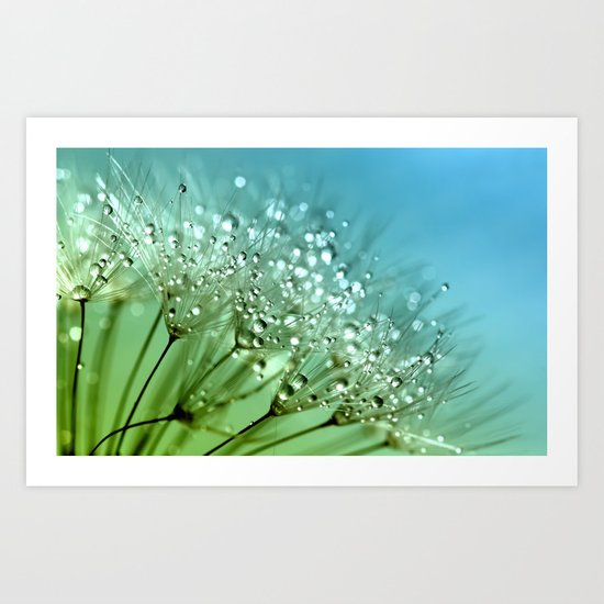 Aqua Sparkling dewdrops on a Dandelion- Flower Flowers Art Print
