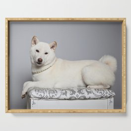 Cream Shiba Inu Dog Serving Tray