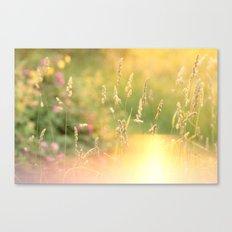 A Field Far Far Away Canvas Print