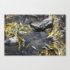 Sirenity Canvas Print