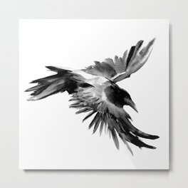 Flying Raven Metal Print