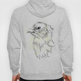 Stoic Chicken Hoody