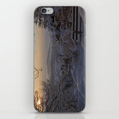 Winter sunset in the Black Forest iPhone & iPod Skin