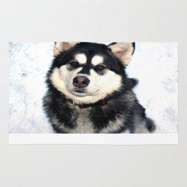 Kayla the Alaskan Malamute Rug