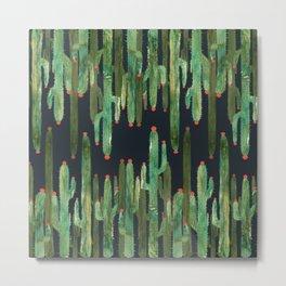 Cactus Mirror at Night Metal Print