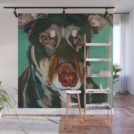 Red Dog - An Australian Kelpie Wall Mural
