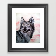 Wolf in Red Framed Art Print