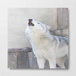 Howling Wolf 3 Metal Print