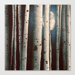 Birch wood at night Canvas Print