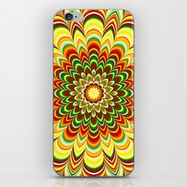 Colorful flower striped mandala iPhone Skin