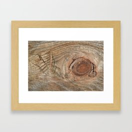 Wood with knot Framed Art Print