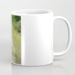 Chains of A Disc Golf Basket Coffee Mug