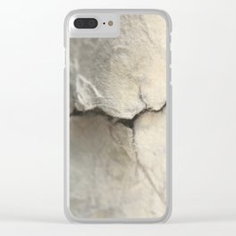 Torn Clear iPhone Case