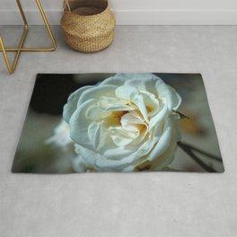 Marvelous Majestic Big White Rose Blossom Close Up Ultra HD Rug