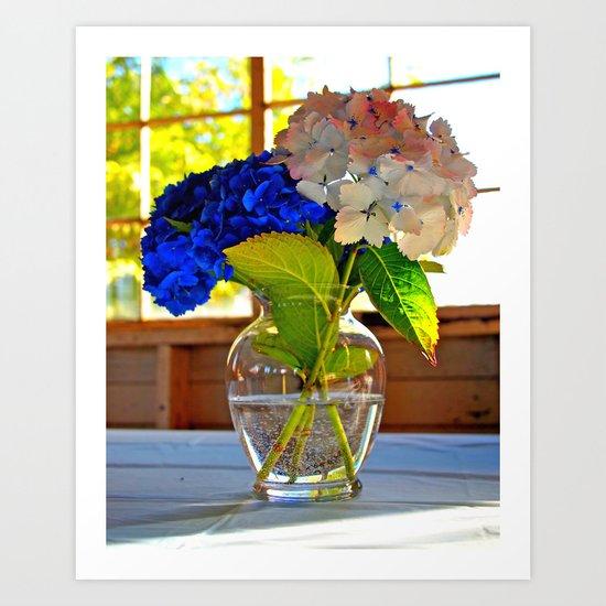 Light and flowers Art Print